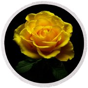 Yellow Rose 4 Round Beach Towel