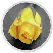 Yellow Rose Round Beach Towel by Angel Jesus De la Fuente