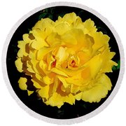 Yellow Rose Kissed By The Rain Round Beach Towel