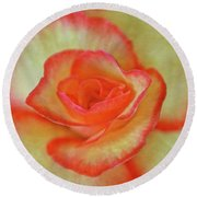 Yellow Rose With Red Tips Round Beach Towel