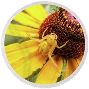 Yellow Spider Round Beach Towel by Doug Long