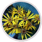 Round Beach Towel featuring the photograph Yellow Stars by Yumi Johnson