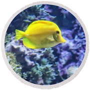 Yellow Tang Round Beach Towel