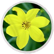 Yellow Threadleaf Round Beach Towel