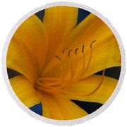 Yellow Tiger Lilly Round Beach Towel