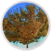 Yellow Tree Blue Sky Round Beach Towel