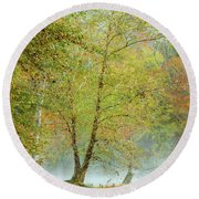 Round Beach Towel featuring the photograph Yellow Trees by Iris Greenwell