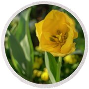 Yellow Tulip Round Beach Towel
