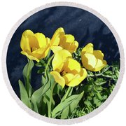 Round Beach Towel featuring the photograph Yellow Tulips by Kathleen Stephens