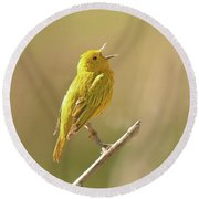 Yellow Warbler Song Round Beach Towel