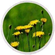 Yellow Wildflowers Round Beach Towel