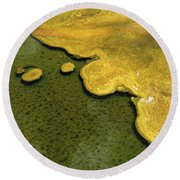 Yellowstone Art. Yellow And Green Round Beach Towel by Ausra Huntington nee Paulauskaite