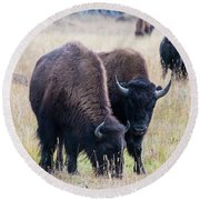 Yellowstone Bison Round Beach Towel
