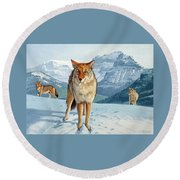 Yellowstone Coyotes Round Beach Towel