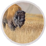 Yellowstone King Round Beach Towel