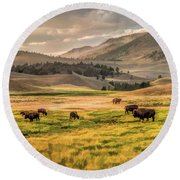 Round Beach Towel featuring the painting Yellowstone National Park Lamar Valley Bison Grazing by Christopher Arndt