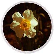 Yesteryear Daffodil Round Beach Towel