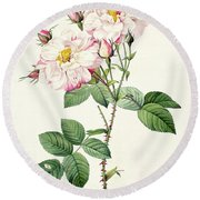 York And Lancaster Rose Round Beach Towel