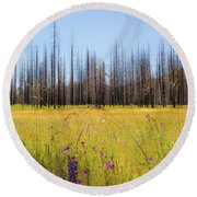 Yosemite Juxtaposition By Michael Tidwell Round Beach Towel