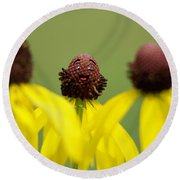 Round Beach Towel featuring the photograph You And Me by Joel Witmeyer