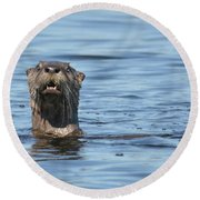 You Otter Know Round Beach Towel