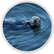 Round Beach Towel featuring the photograph You Otter Take My Picture, Lady by Lora Lee Chapman