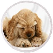 You'll Be Fine, Little Guy Round Beach Towel