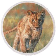 Round Beach Towel featuring the painting Youn Lion by David Stribbling