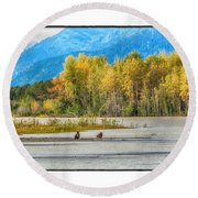 Young Eagles Round Beach Towel