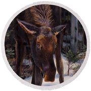 Young Moose And Snowy Forest Springtime In Alaska Wildlife Home Decor Painting Round Beach Towel