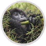 Round Beach Towel featuring the painting Young Mountain Gorilla by Alan M Hunt