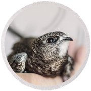 Young Swift Round Beach Towel