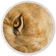 Your Lion Eye Round Beach Towel by Carolyn Marshall