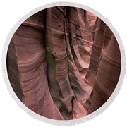 Zebra Canyon Round Beach Towel