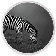 Zebra Round Beach Towel by Charuhas Images