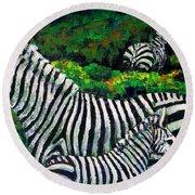 Zebra Family Round Beach Towel by Shirley Heyn