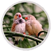 Round Beach Towel featuring the photograph Zebra Finch Colloquy by Rona Black