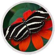 Zebra Longwing Butterfly Round Beach Towel by Kenneth Albin