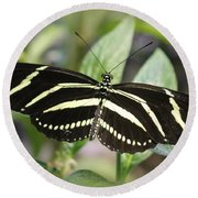 Zebra Longwing Butterfly Round Beach Towel by Dora Sofia Caputo Photographic Art and Design
