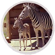 Zebra Mom And Baby Round Beach Towel