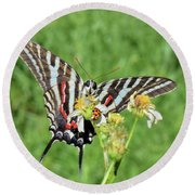 Zebra Swallowtail And Ladybug Round Beach Towel