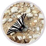 Zebra Swallowtail Round Beach Towel