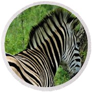 Zebra Walks Round Beach Towel