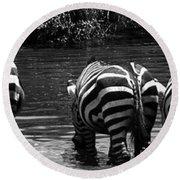 Zebras Cautiously Drinking Round Beach Towel by Darcy Michaelchuk