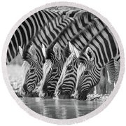 Zebras Drinking Round Beach Towel