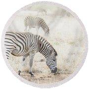 Zebras In Dreamy Scene - Horizontal Banner Round Beach Towel