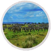 Zebras On The Serengeti Round Beach Towel