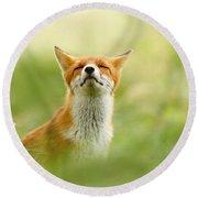 Zen Fox Series - Zen Fox Does It Agian Round Beach Towel by Roeselien Raimond