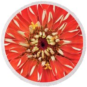 Zinnia Elegans Benarys 'giant Orange' Round Beach Towel