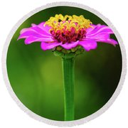 Zinnia Round Beach Towel
